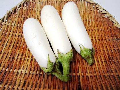 eggplant 白い茄子